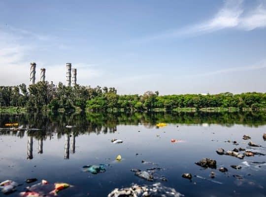 emergência ambiental o que é e quando pedir ajuda profissional porto alegre rio grande do sul