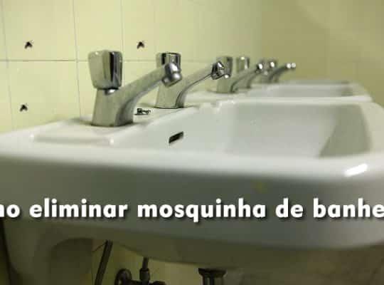 como eliminar mosquinha de banheiro